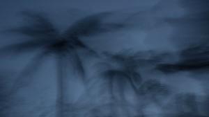 http://www.dylanbakker.com/files/gimgs/th-68_storm.jpg