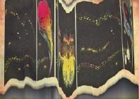 http://www.dylanbakker.com/files/gimgs/th-73_comet1.jpg